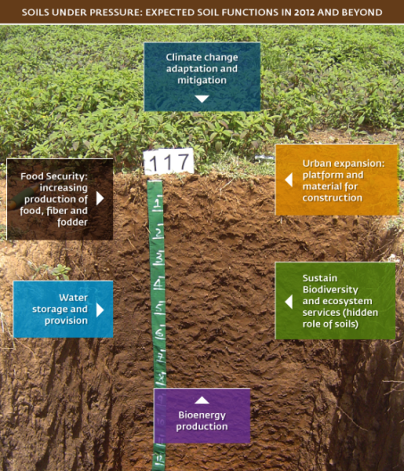 Expected Soil Function Beyond 2012: FAO.ORG